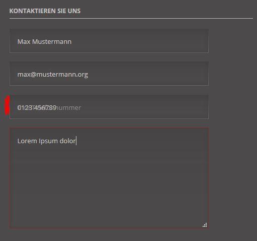 Luxe-formular-telefonfeld-2