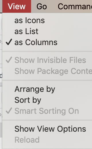 Show_invisible_files