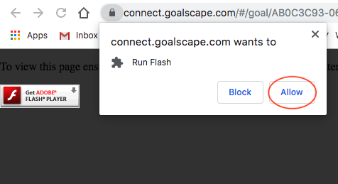 Allow_flash_in_chrome