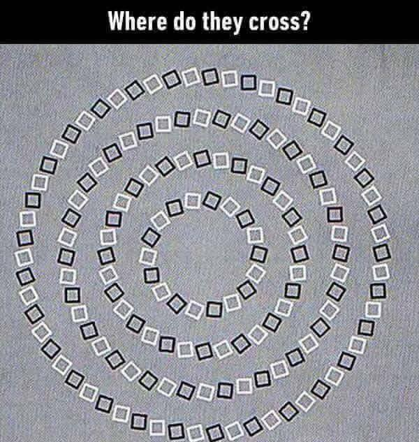 Where_do_they_cross