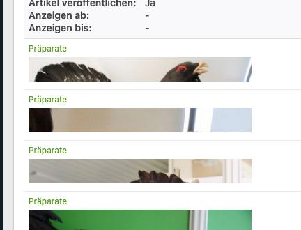 Bildschirmfoto_2020-08-18_um_13.42.35